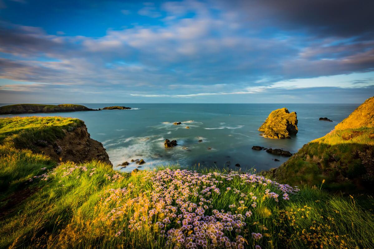 Annestown Cliffs Ireland