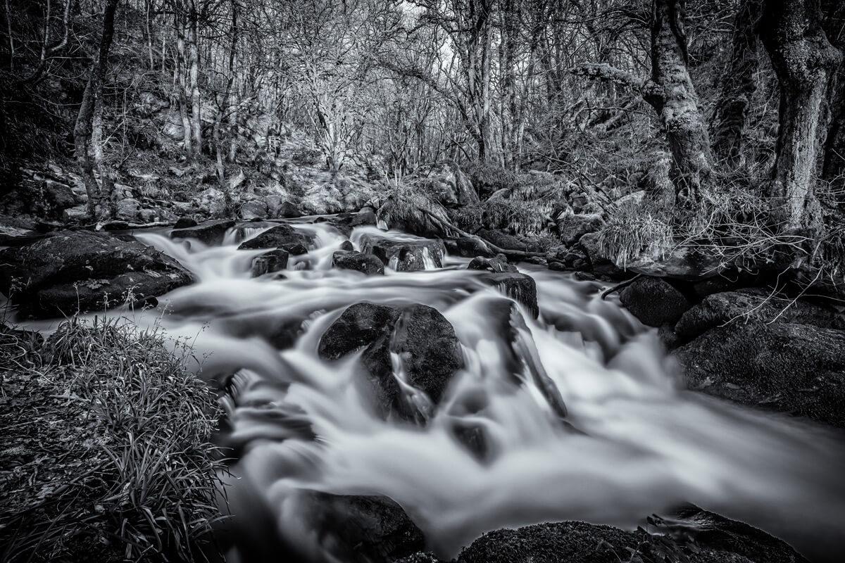Golitha Falls Nature Reserve, Cornwall